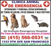 All Animals Emergency Hospital